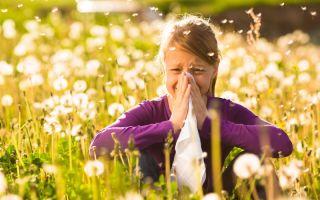 Организация гипоаллергенного быта при бронхиальной астме: рекомендации