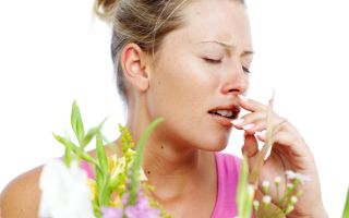 Аллергическая бронхиальная астма: механизм развития, симптомы, лечение