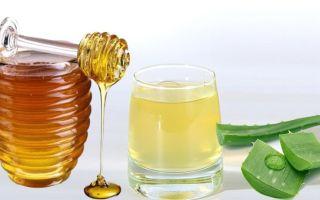 Как быстро вылечить кашель при помощи меда и алое