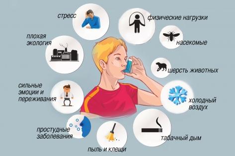 Факторы риска в развитии астмы
