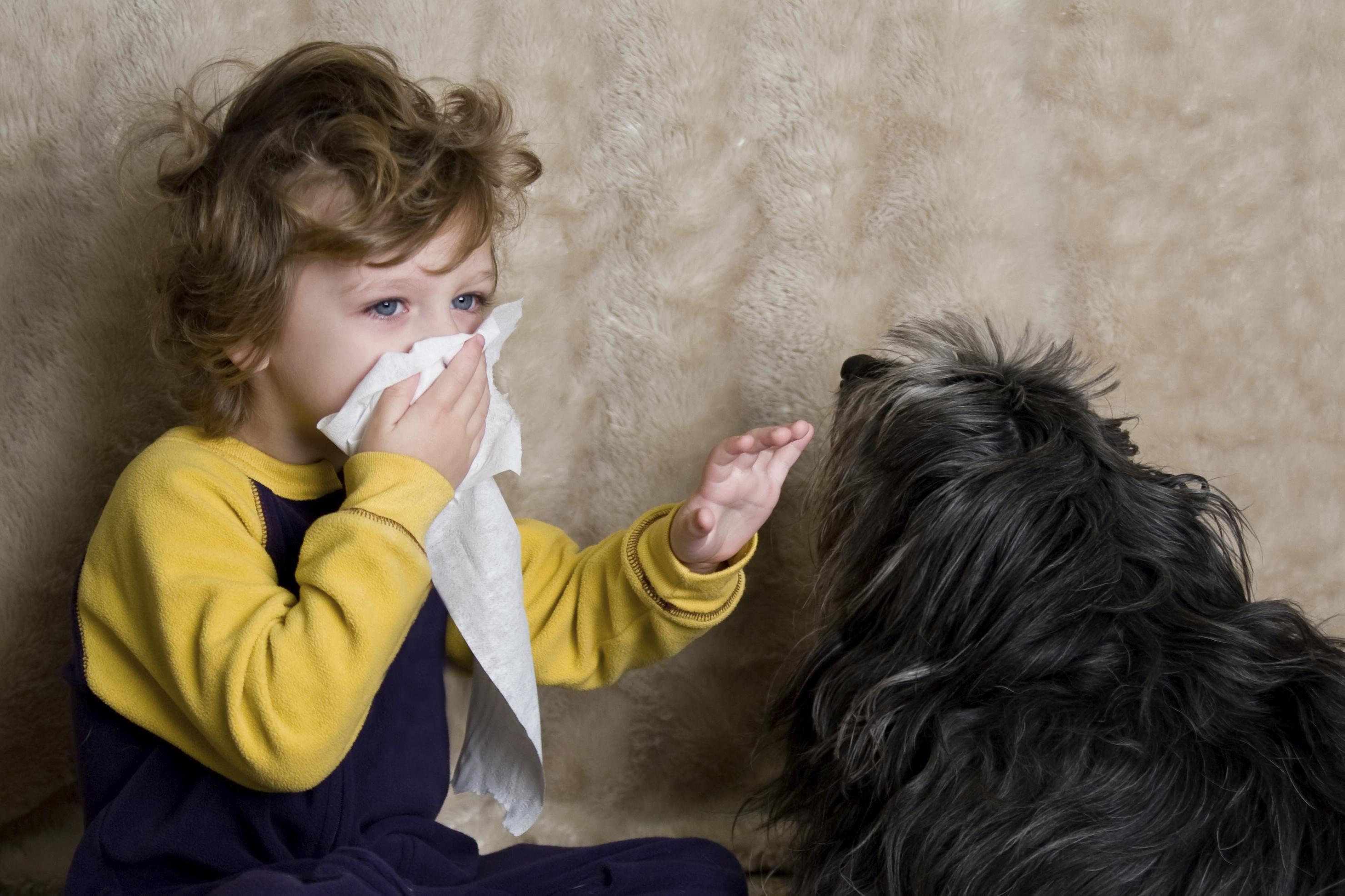 Ребенок с аллергией и собака