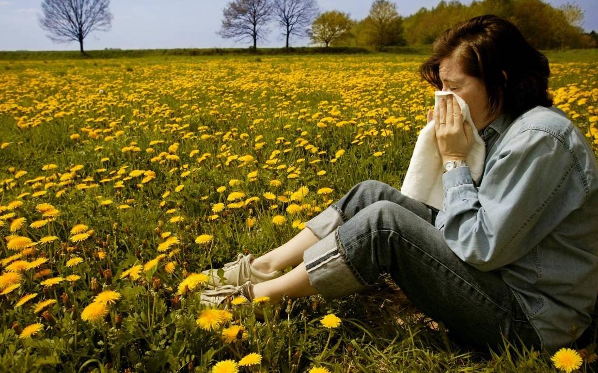 сморкается в поле с цветами
